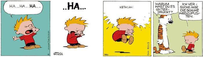 Calvin vom 23.06.2021